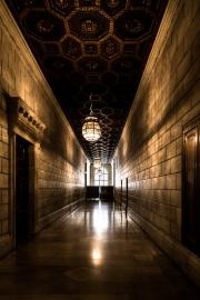 Shine corridor